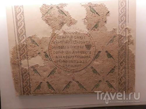 Музей Израиля - синагоги в разных культурах и много чего другого / Израиль