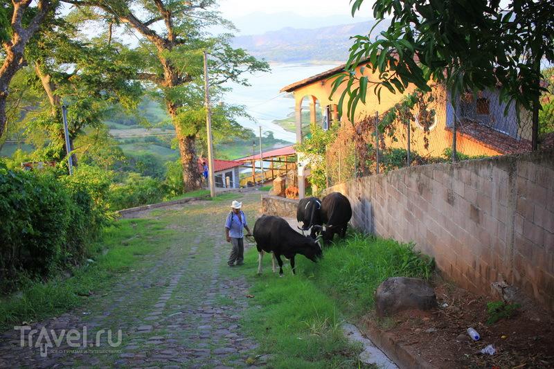 Сучитото - место птиц и цветов / Сальвадор