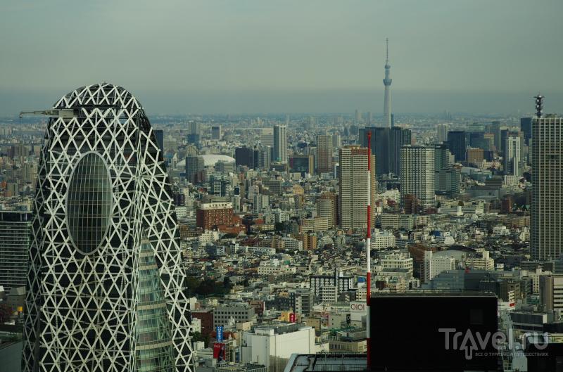 Прогулка по Токио / Фото из Японии
