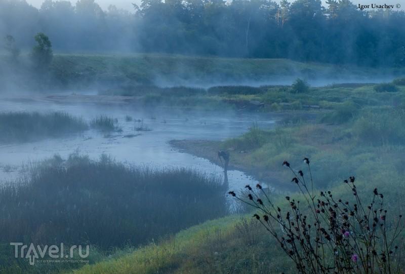 Река Угра и Персеиды / Фото из России