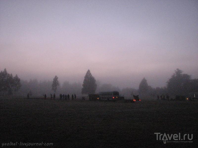 В стране антиподов. Воздухоплаватели. Утро туманное / Фото из Новой Зеландии