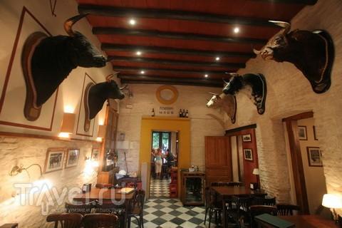 Испанские страсти. Бычьи деликатесы / Испания