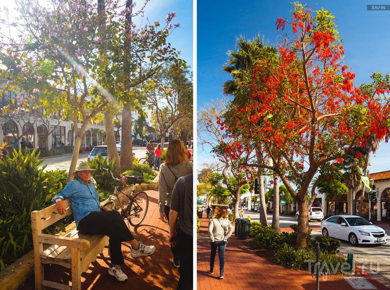 По цветущему побережью Калифорнии. Санта-Барбара и шоссе №1 / Фото из США