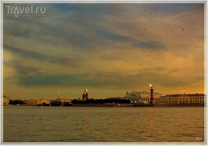 Прогулка по Неве / Фото из России