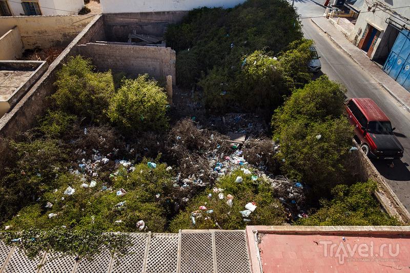 Марокканский бомж-вояж. Эссуэйра / Фото из Марокко