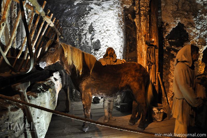 Соляная шахта Величка, Польша / Фото из Польши
