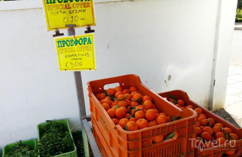 Какие цены на продукты на Кипре в 2016 году? / Кипр