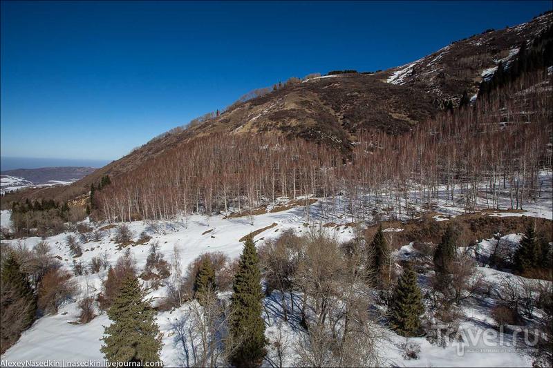 Куршевель по-казахски или Ак Булак инкрэдибл / Фото из Казахстана