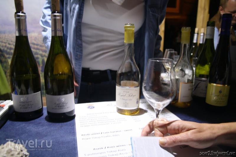 Будайский винный фестиваль / Венгрия