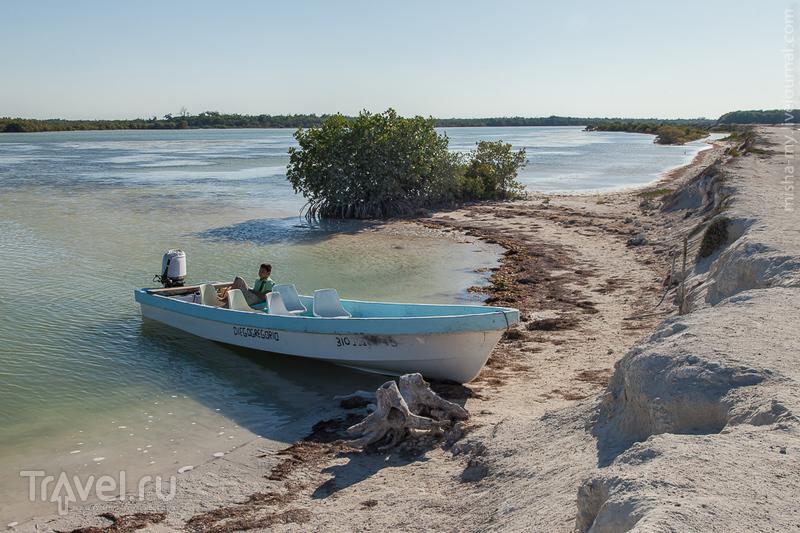 Поездка по Юкатану. Заповедник Рио Лагартос / Фото из Мексики
