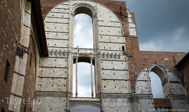 Дуомо Сиены / Италия