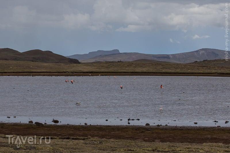 Поездка по Перу. Переезд Чивай-Куско / Фото из Перу
