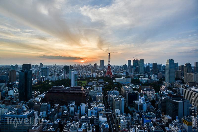 Токио - видовые и зоопарк / Фото из Японии