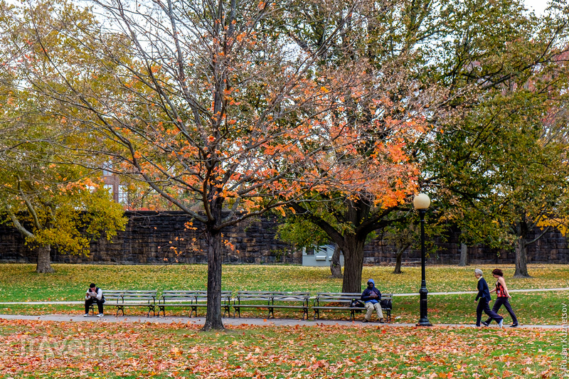 Осень в Новой Англии, штаты Род-Айленд и Коннектикут / Фото из США