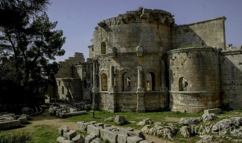 Сирия без войны. Монастырь Святого Симеона / Сирия