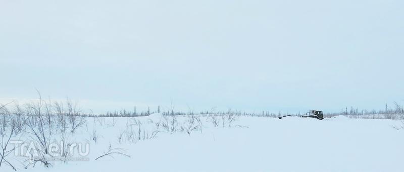Рассвет под Салехардом и набег на Лабытнанги / Россия