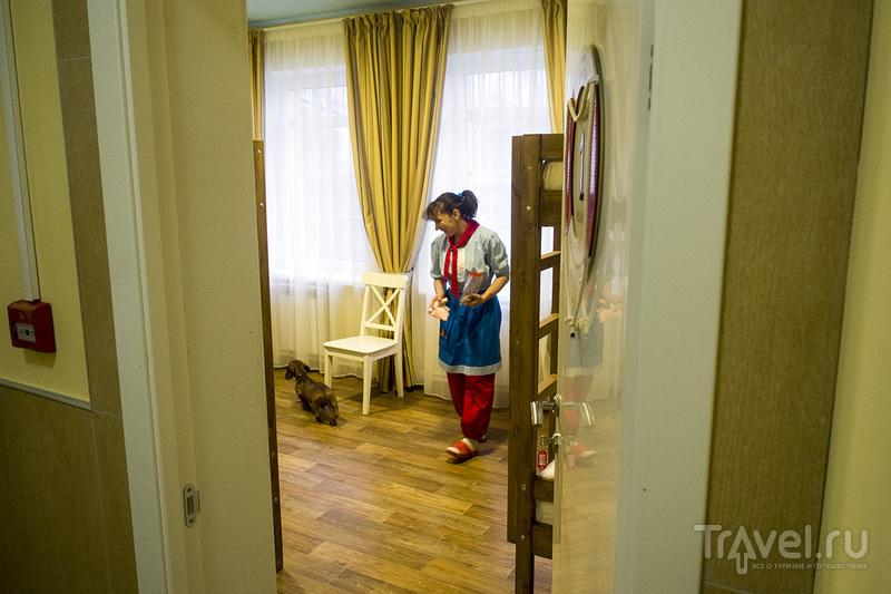 Идеальное путешествие по России / Фото из России