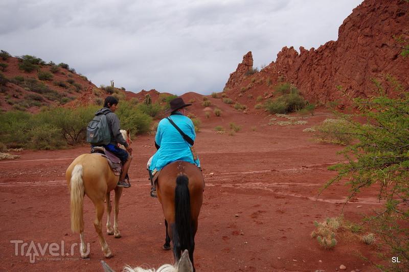 На лошадке вокруг Тупизы / Боливия