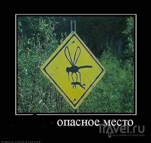 Сахалин. Там прекрасно / Россия