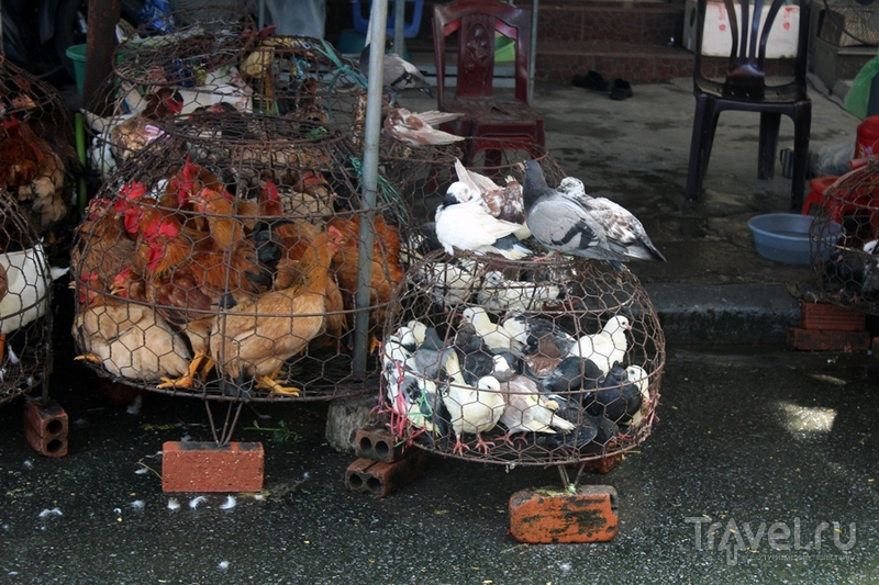 Хайфон - обычный город во Вьетнаме / Вьетнам
