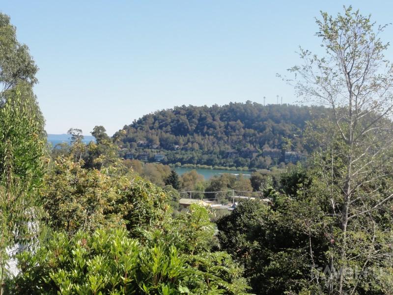 Чилийская Патагония. Регион Араукания. Прогулки вокруг Пукона / Чили