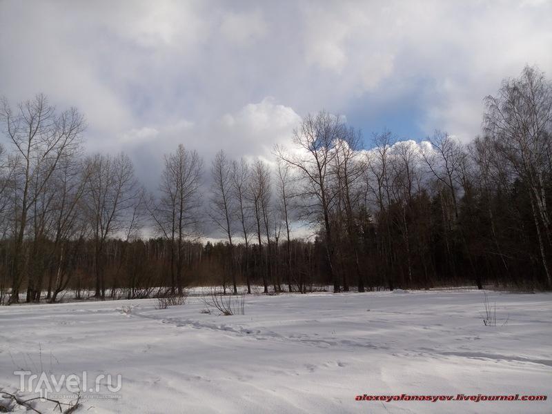 Салтыковский лесопарк, по последнему снегу / Россия