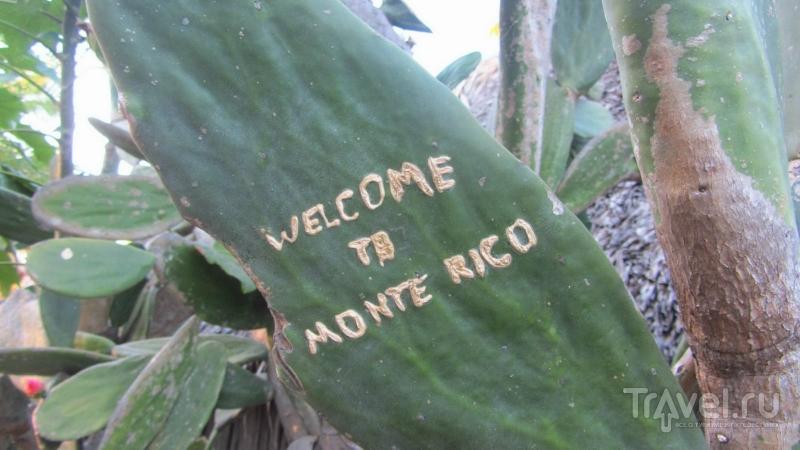 Монтеррико: тихоокеанское побережье Гватемалы / Гватемала