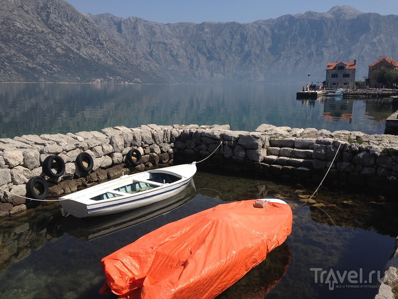 Праздник камелий в Столиве / Фото из Черногории