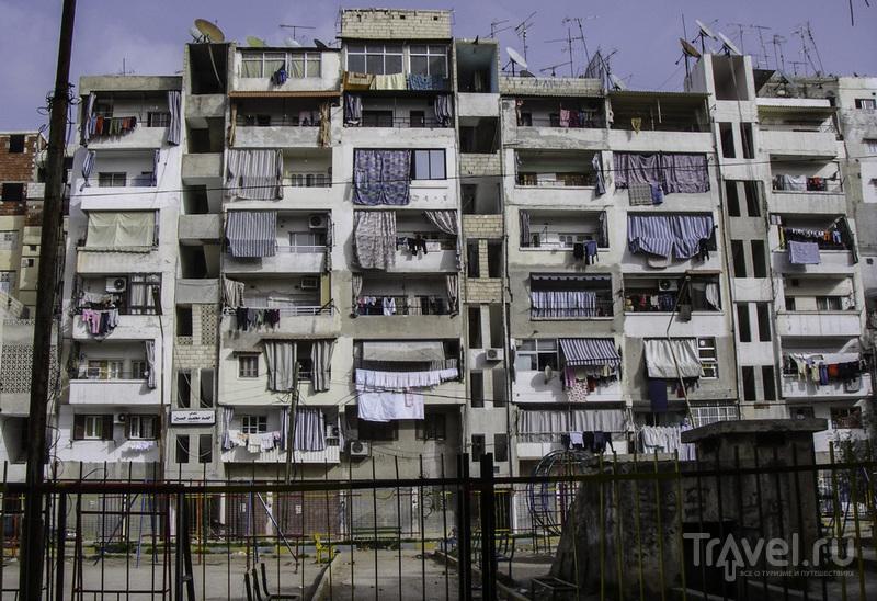 Сирия без войны. Латакия и окрестности / Сирия