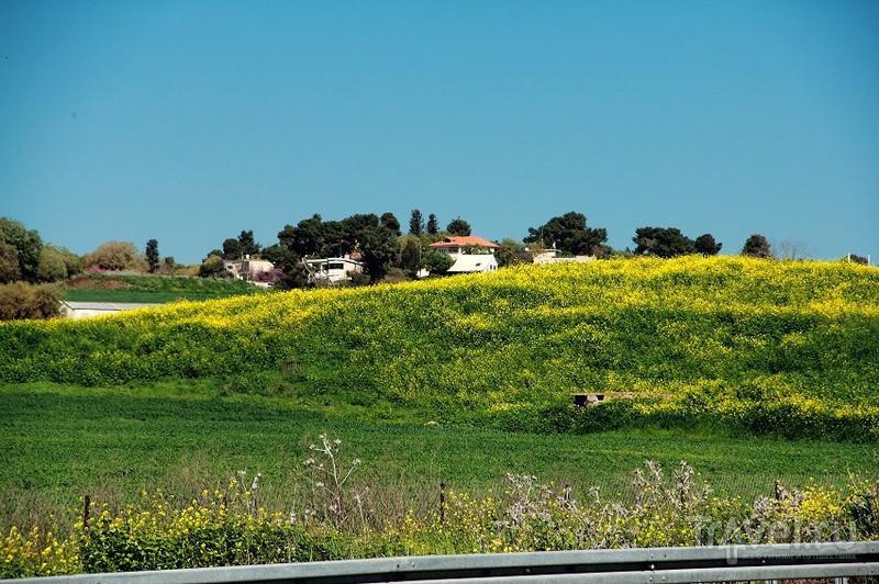 Заповедник Хула - естественно и красиво / Фото из Израиля