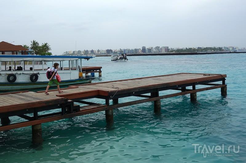 Мальдивы. Места обитания. Остров Дигура / Фото с Мальдив