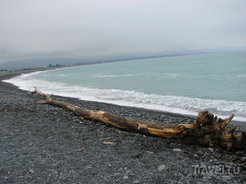 В стране антиподов. Каикоура: на краю земли / Фото из Новой Зеландии