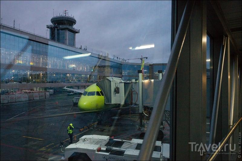"""Бизнес-зал авиакомпании """"S7 airlines"""" в аэропорту Домодедово / Россия"""