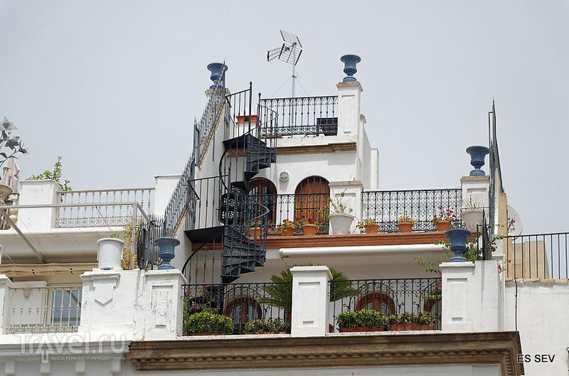Севилья  -  недооцененная жемчужина Испании / Испания