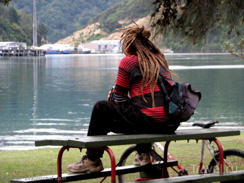 В стране антиподов. Морские бабочки / Фото из Новой Зеландии