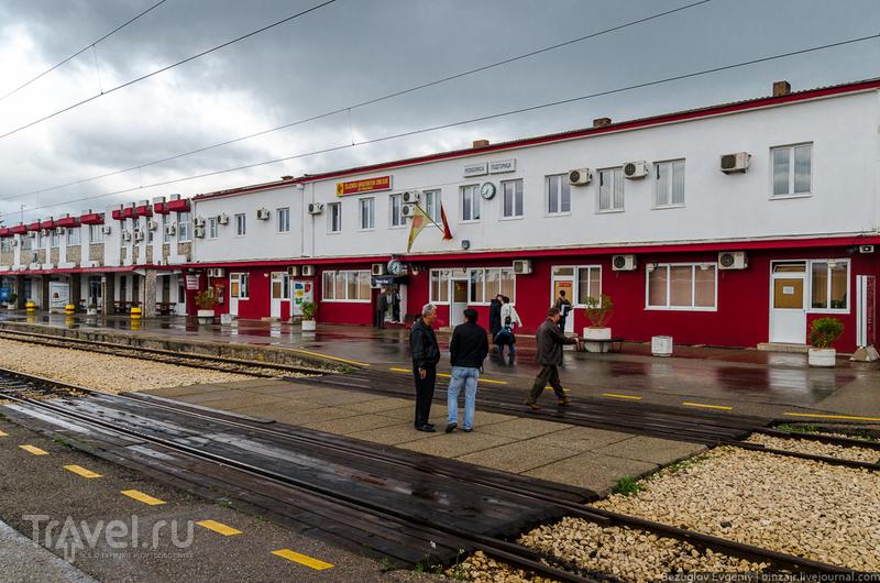 Дорога в Подгорицу / Фото из Черногории