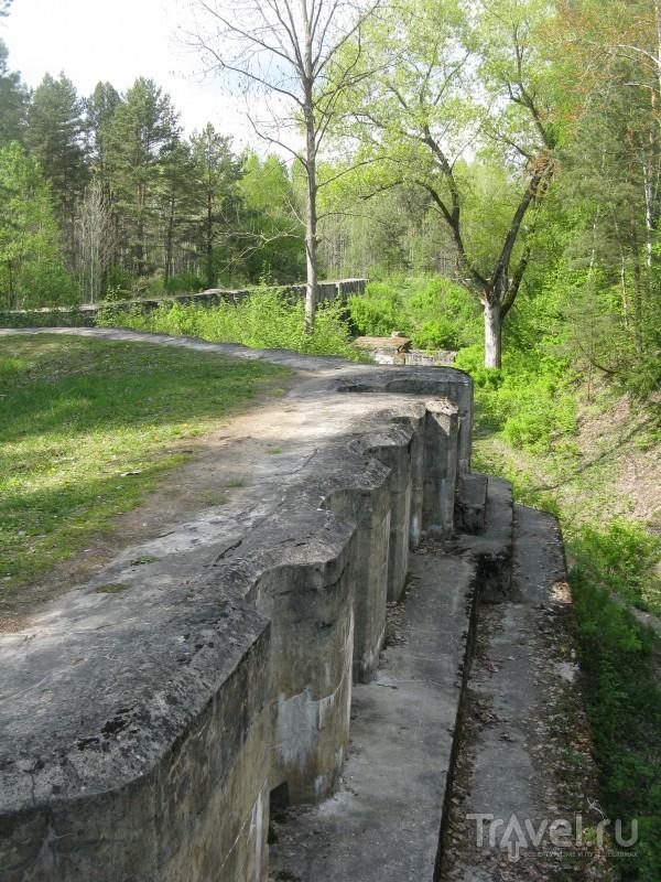 Беларусь - признание в любви. Усадьба Святск, гродненские форты, Липичанская пуща / Белоруссия