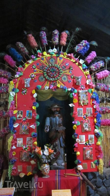 Ароматы кофе и звуки музыки в Хокотенанго / Гватемала