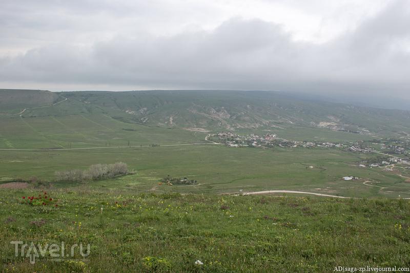 Тайны дикого пиона / Фото из России