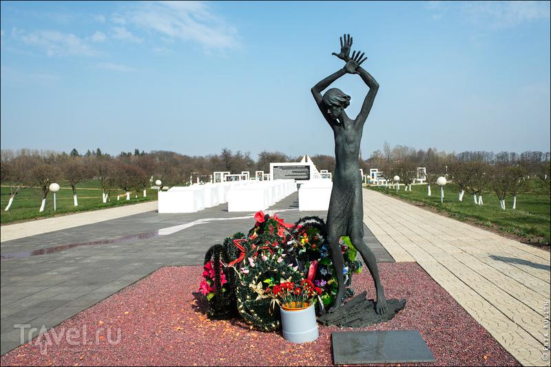Красный берег - красивый и кровавый / Фото из Белоруссии
