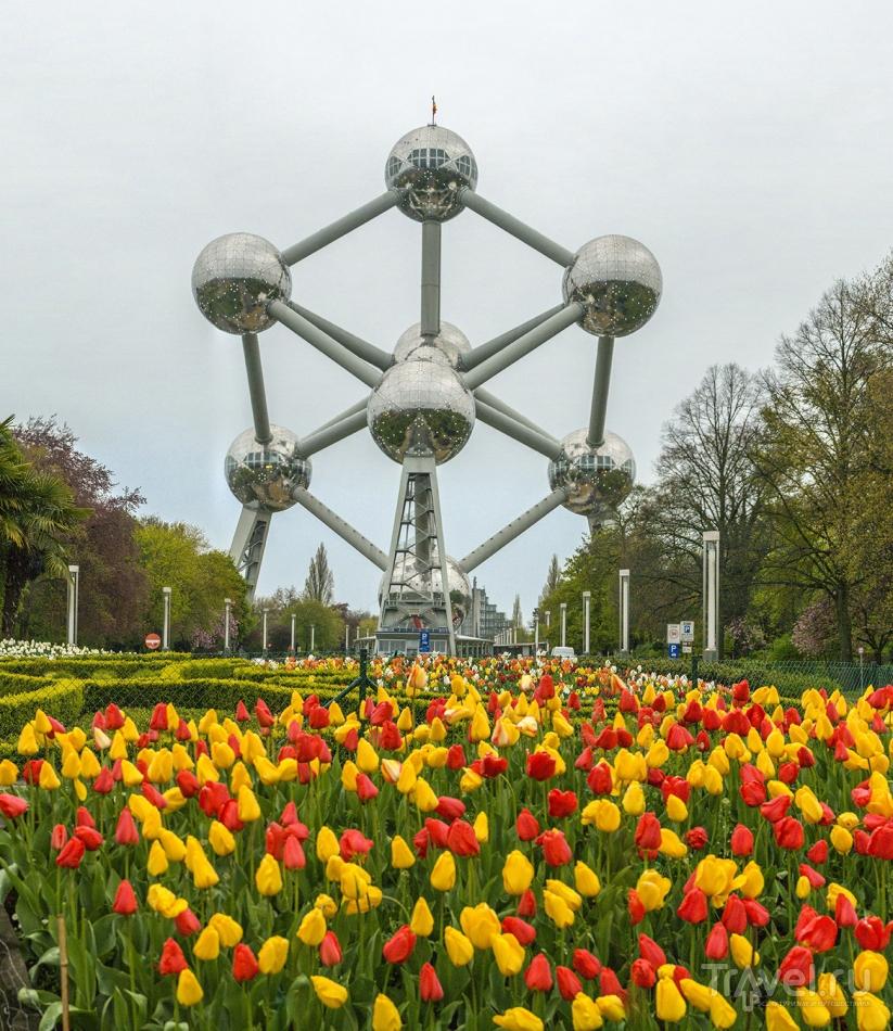 Бельгия и Голландия / Бельгия