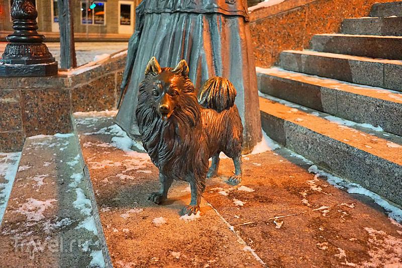 """""""Дама с собачкой"""" в Могилеве / Белоруссия"""
