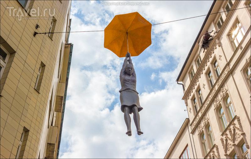 В Чехию пришла весна / Фото из Чехии