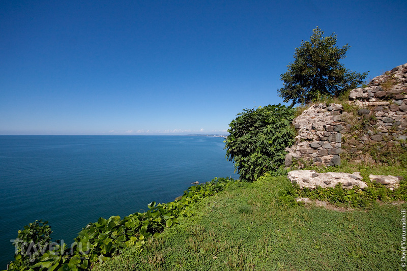 Окрестности Батуми за один день: Ботанический сад и крепость Петра / Фото из Грузии