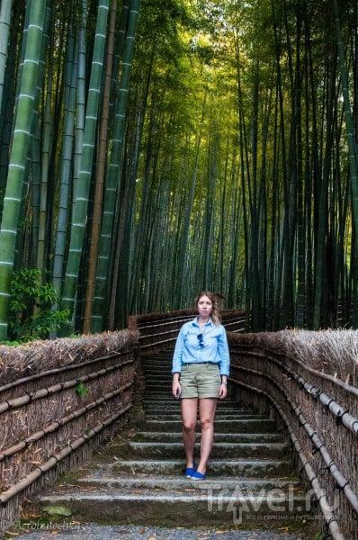 Практические советы для путешествия в Японию / Япония