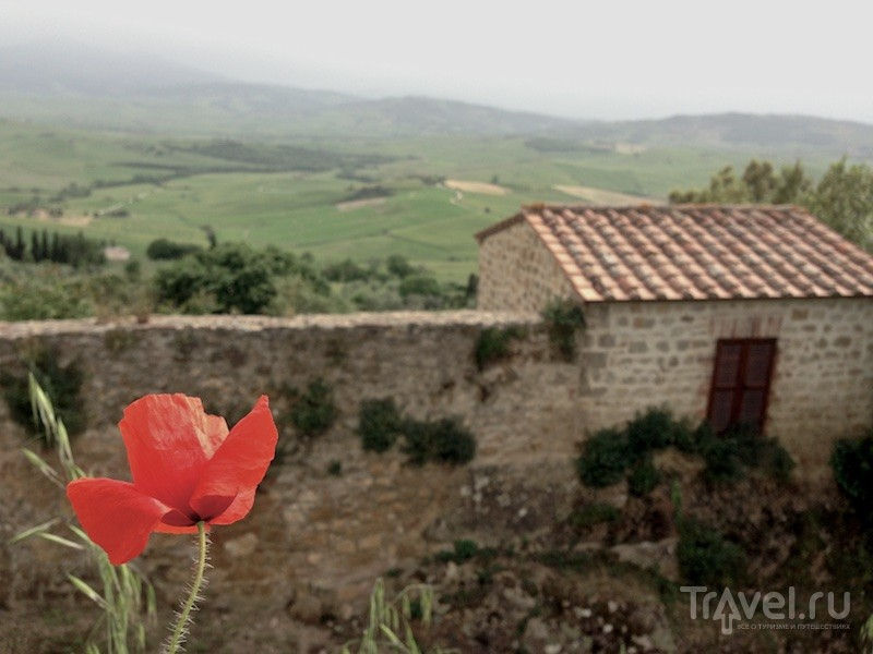 Сырная ферма в итальянском Пьенца / Италия