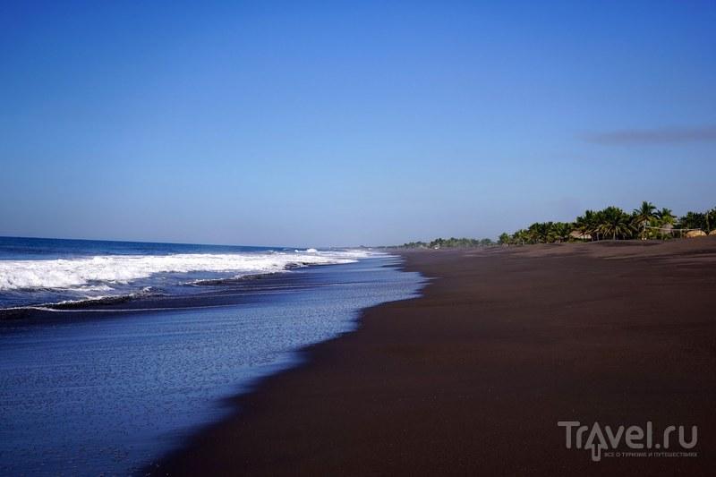 Игуаны, черепашья ферма, мангровые леса и серфинг. Монтеррико, Гватемала / Фото из Гватемалы