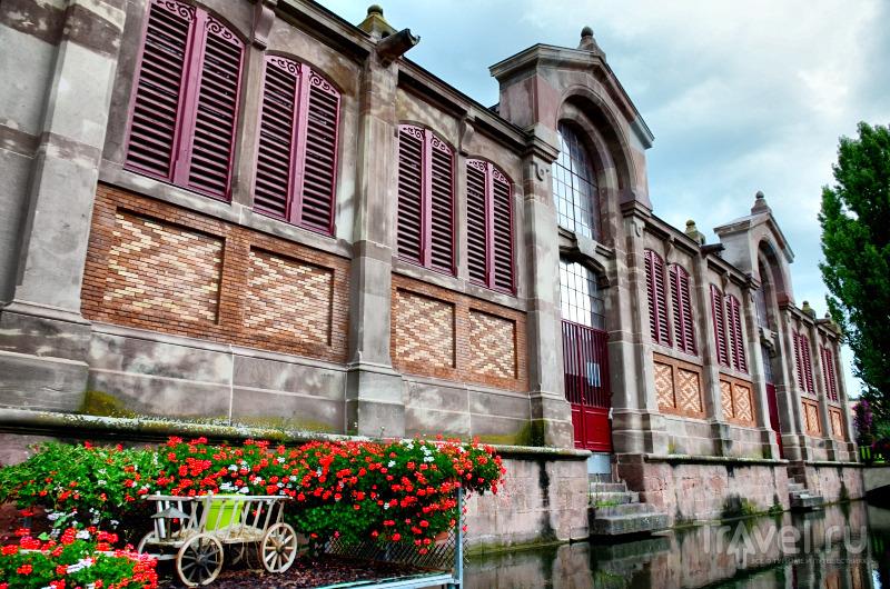 Маленькая Венеция, Кольмар, Франция / Фото из Франции