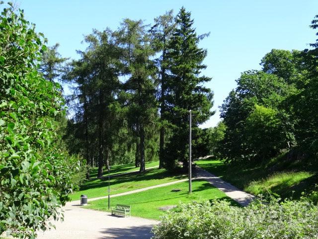 Парк Кайвопуисто в Хельсинки / Финляндия