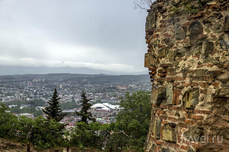 Нарикала и Тбилисский ботанический сад / Фото из Грузии